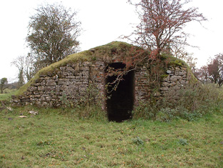 Ice house to south of Tristernagh Priory : entrance.