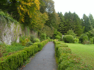 View to west wall of garden.