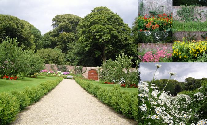Saltmills: Colclough Walled Garden at Tintern Abbey