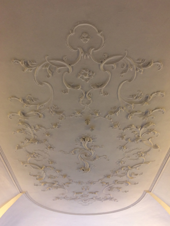 11 Parnell Square, Dublin 1 08 – Saloon Ceiling