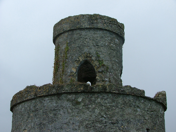 The Tower on Mullagh Hill, Tullamore 04