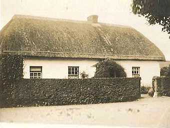 Thatched House, Ballygarran, Wexford 04